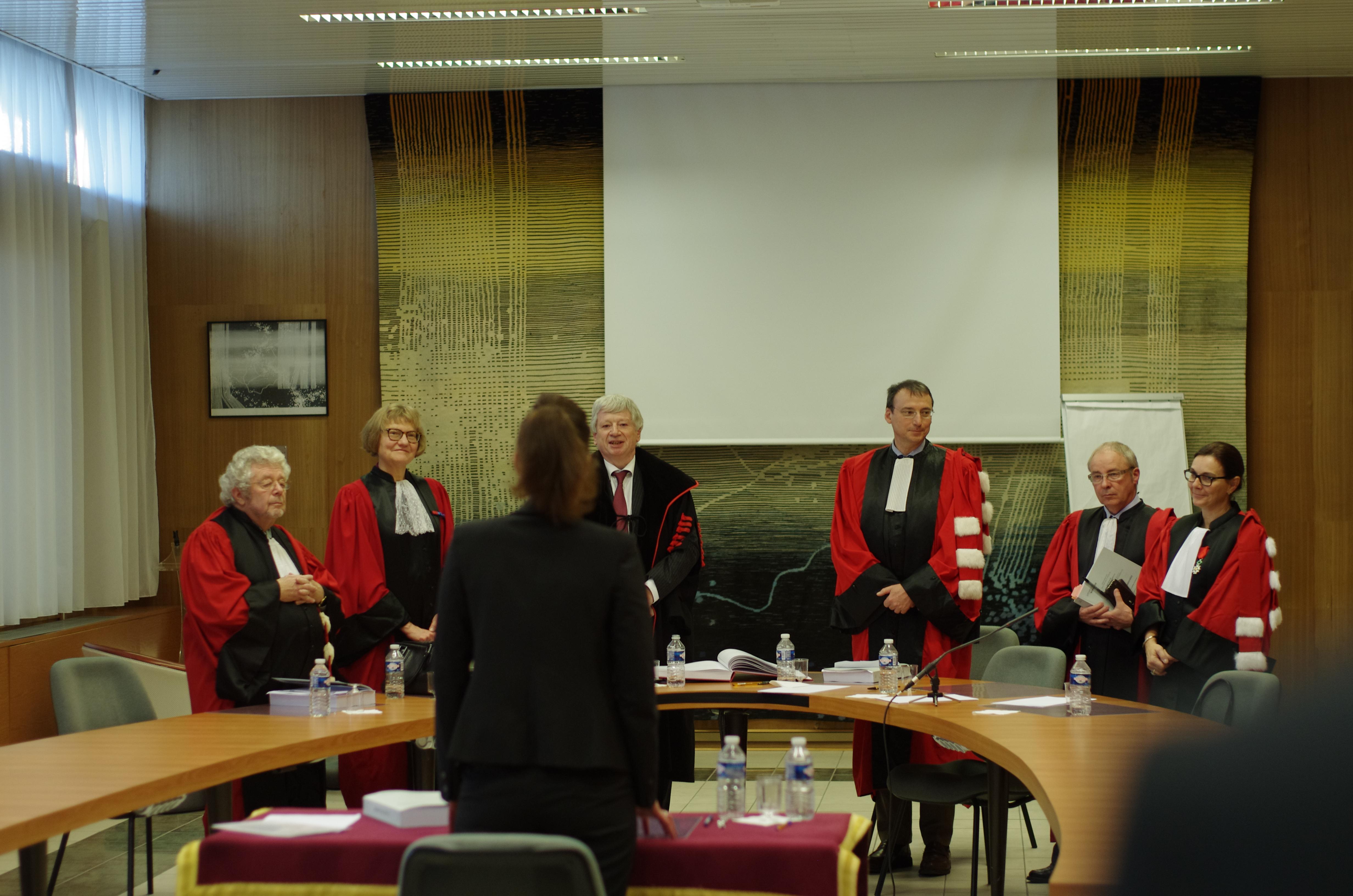 Julie TEREL soutenance de thèse - Pierre MURAT - Jean-Louis RENCHON - Adeline GOUTTENOIRE - Jean HAUSER - Françoise DEKEUWER-DEFOSSEZ - Jean-Jacques LEMOULAND