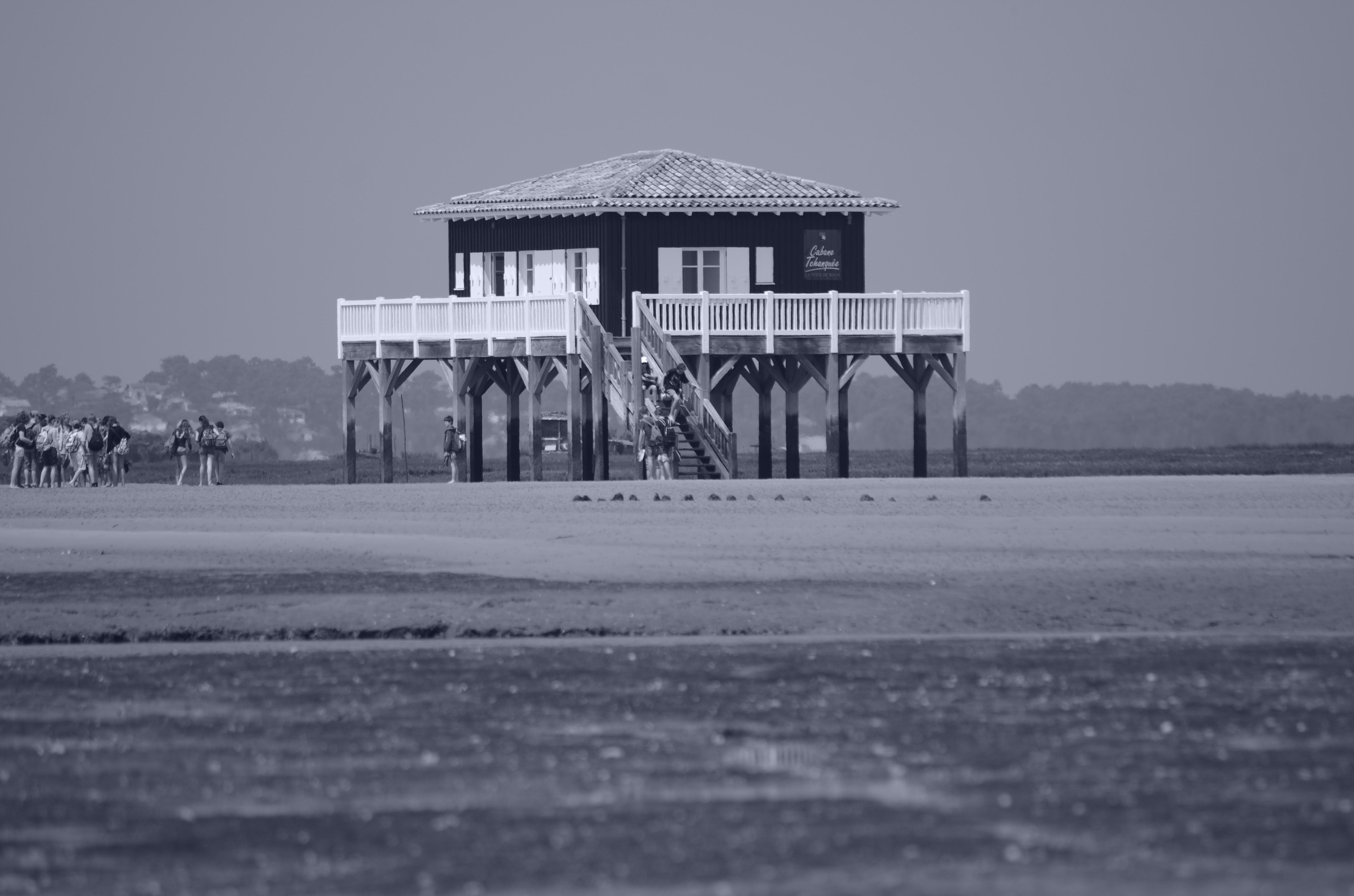 Domaine public maritime de l'île aux oiseaux du Bassin d'Arcachon